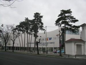 comitetul-olimpic-roman1
